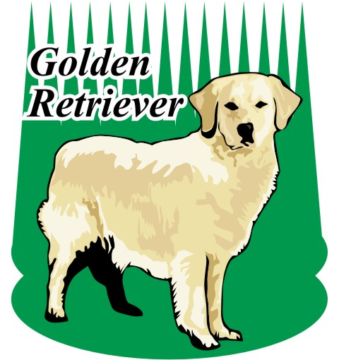 golden retriever wandtattoo