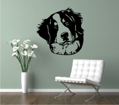 bernese mountainn wandtattoo dog