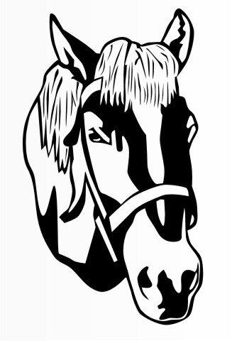 MO19 Pferd Reitsport Aufkleber, Reitsportaufkleber