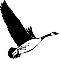 Kanadische Gans Aufkleber, Vogelaufkleber Sticker