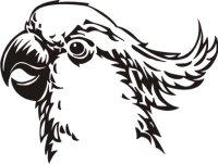 Cockatoo Aufkleber Vogelaufkleber Sticker