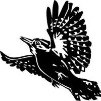 Buntspecht Aufkleber Vogelaufkleber