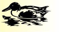 Ente Aufkleber Vogelaufkleber Duck Sticker M03