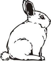 Bunny Aufkleber, Bunnyaufkleber Hase Aufkleber