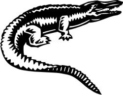 Alligator Aufkleber, Alligatoraufkleber