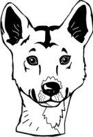 Dingo Aufkleber