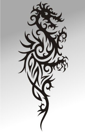 MO04 Drachen Aufkleber Drache Autoaufkleber Dragon Sticker