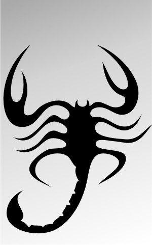 MO17 Skorpion Aufkleber Skorpionaufkleber Scorpion Sticker