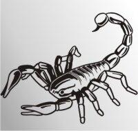 MO20 Skorpion Aufkleber Skorpionaufkleber Scorpion Sticker