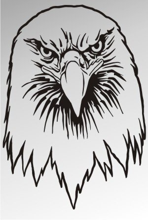 MO01 Adleraufkleber Eagle Autoaufkleber