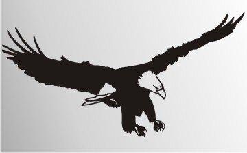 MO07 Adleraufkleber Eagle Autoaufkleber