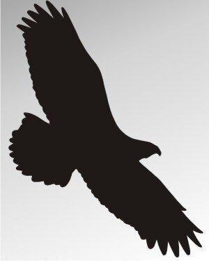 MO13 Adleraufkleber Eagle Autoaufkleber