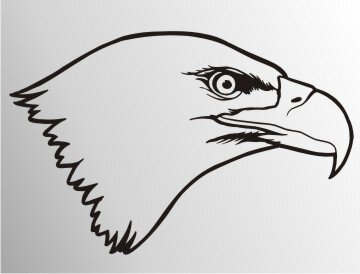 MO14 Adleraufkleber Eagle Autoaufkleber