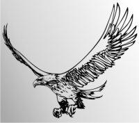 Adler Flammen Aufkleber MO05