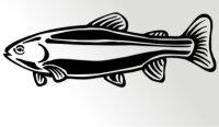 Regenbogenforelle Fisch Aufkleber Sticker Angeln