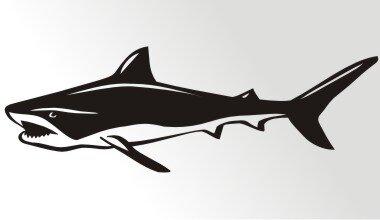 Hai Aufkleber Haiaufkleber Mo04