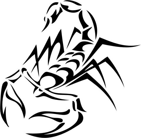 Skorpion Wandtattoo Tapeten Deko Wanddeko M-03