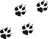 Hundepfoten 10-er Set Aufkleber, Tatzenaufkleber