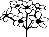 Apfelblüte Wandtattoo Tapeten Deko Blumen