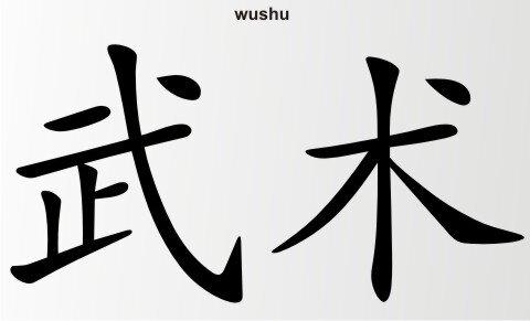 Wushu China Zeichen Aufkleber Chinazeichen Sticker