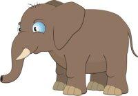 Elefant Wandtattoo mit Digitaldruck
