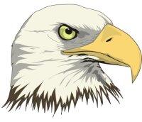 Adler Aufkleber im Digitaldruck MO02