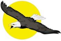 Adler Aufkleber im Digitaldruck MO05
