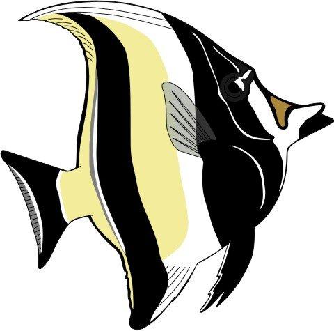 Halfterfisch Aufkleber im Digitaldruck