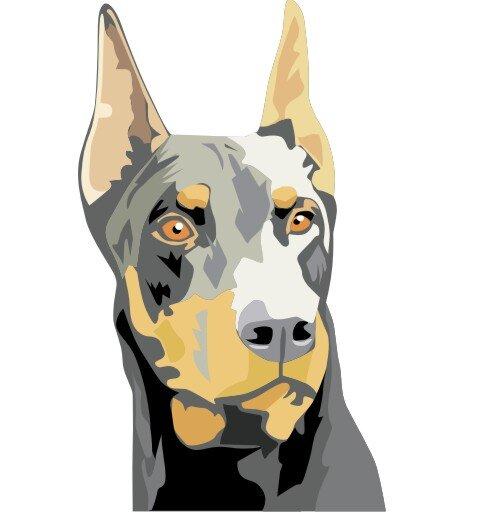 Dobermann Hundeaufkleber im Digitaldruck