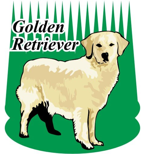 Golden Retriever Hundeaufkleber im Digitaldruck