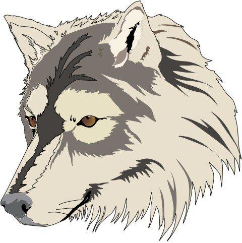 Wolf Aufkleber im Digitaldruck