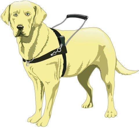 Blindenführhund Hundeaufkleber im Digitaldruck