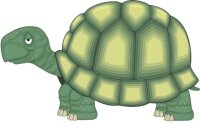 Schildkröte Aufkleber im Digitaldruck MO03