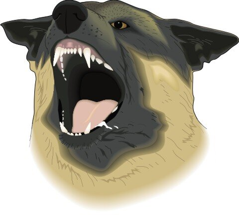 Deutsche Schäferhund Hundeaufkleber im Digitaldruck
