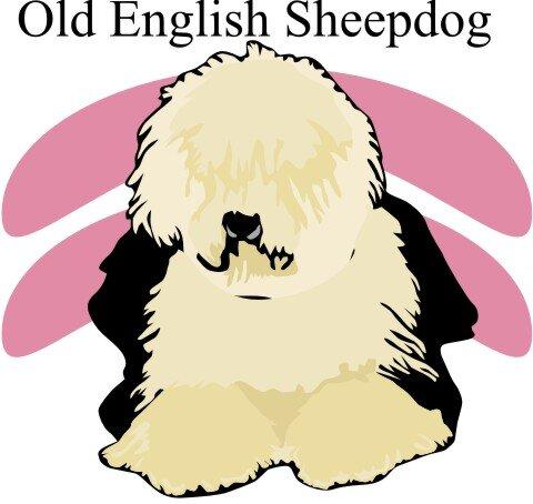 Englischer Schaeferhund Hundeaufkleber im Digitaldruck