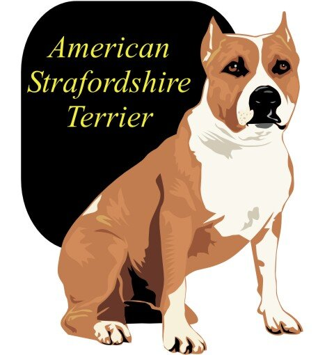 American Staffordshire Terrier Wandtattoo im Digitaldruck