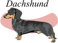 Dachshund Wandtattoo im Digitaldruck