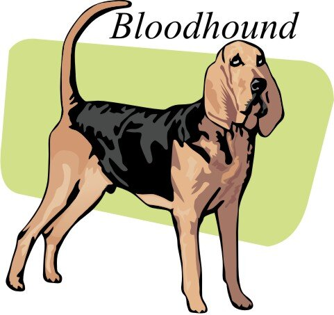 Bloodhound Wandtattoo im Digitaldruck