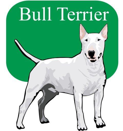 Bull Terrier Wandtattoo im Digitaldruck