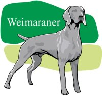 Weimaraner Wandtattoo im Digitaldruck