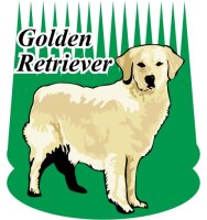 Golden Retriever Wandtattoo im Digitaldruck