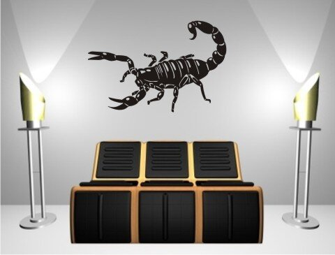 skorpion wandtattoo tapeten deko m 21. Black Bedroom Furniture Sets. Home Design Ideas