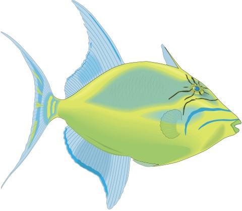 drueckerfisch aufkleber