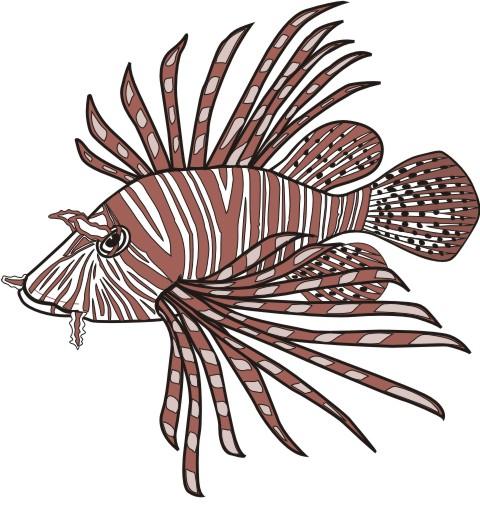 feuerfisch aufkleber