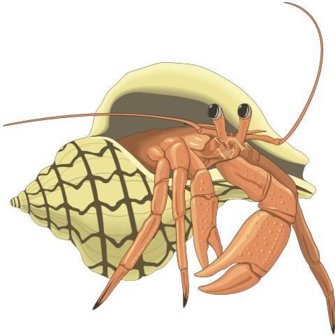 krabbe aufkleber
