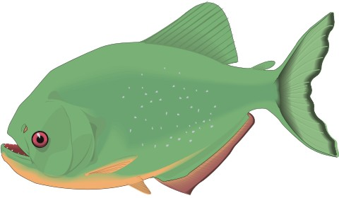 piranha aufkleber