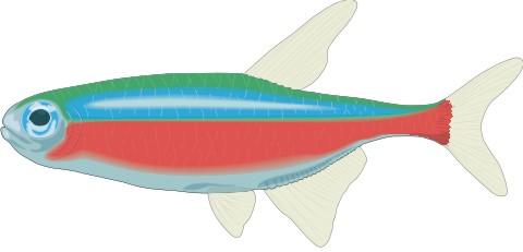 tetra fisch aufkleber