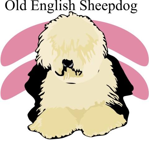 englischer schaeferhund aufkleber