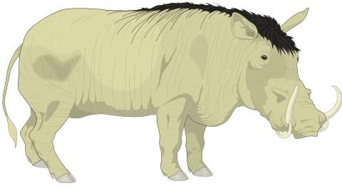 warzenschwein aufkleber