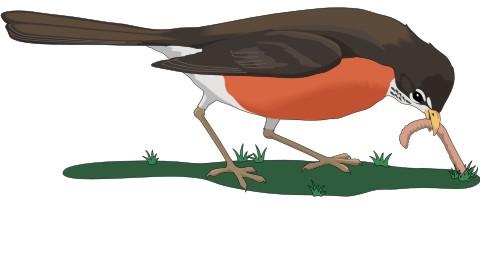 frueher vogel aufkleber